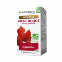 Arkogélules Vigne Rouge Bio Gélules Fl/45 à Saint-Chef