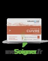 GRANIONS DE CUIVRE 0,3 mg/2 ml S buv 30Amp/2ml à Saint-Chef