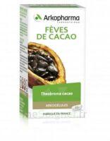 Arkogélules Cacao Gélules Fl/45 à Saint-Chef