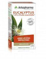 Arkogélules Eucalyptus Gélules Fl/45 à Saint-Chef