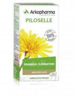Arkogélules Piloselle Gélules Fl/45 à Saint-Chef