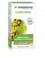 Arkogélules Garcinia Gélules Fl/45 à Saint-Chef