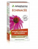Arkogélules Echinacée Gélules B/45 à Saint-Chef