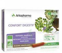 ARKOFLUIDE BIO ULTRAEXTRACT Solution buvable confort digestif 20 Ampoules/10ml à Saint-Chef