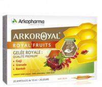 Arkoroyal Royal'Fruits Gelée royale Goji Grenade Baobab Solution buvable 20 Ampoules/10ml à Saint-Chef