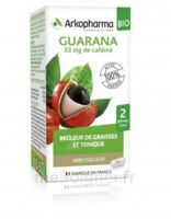 Arkogélules Guarana Bio Gélules Fl/45 à Saint-Chef