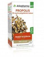 Arkogélules Propolis Bio Gélules Fl/45 à Saint-Chef