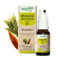 Rinalgem Respiration Spray Buccal Gc29 Bio Spray/15ml à Saint-Chef