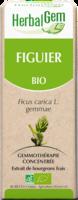 Herbalgem Figuier Macerat Mere Concentre Bio 30 Ml à Saint-Chef