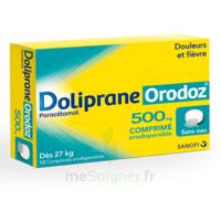 Dolipraneorodoz 500 Mg, Comprimé Orodispersible à Saint-Chef