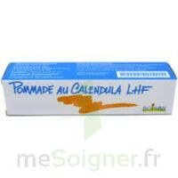 CALENDULA LHF POM T/20G à Saint-Chef