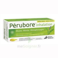Perubore Caps Inhalation Par Vapeur Inhalation Plq/15 à Saint-Chef