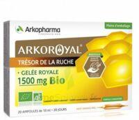 Arkoroyal Gelée royale bio 1500 mg Solution buvable 20 Ampoules/10ml à Saint-Chef