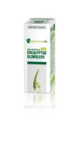 Huile essentielle Bio Eucalyptus Globuleux à Saint-Chef
