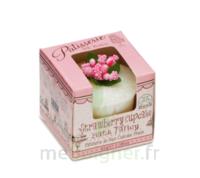 Le Comptoir Des Tendances Petit Four De Bain - Strawberry Cupcake à Saint-Chef