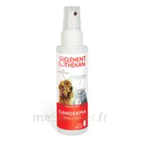 Clément Thékan Caniderma Solution externe cicatrisant Spray/125ml à Saint-Chef