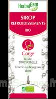 Herbalgem Sirop Bio Refroidissement 150ml à Saint-Chef