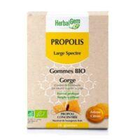 Herbalgem Propolis Large Spectre Gomme Bio B/24 à Saint-Chef
