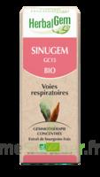 Herbalgem Sinugem Solution Buvable Bio Fl Cpte-gttes/30ml à Saint-Chef