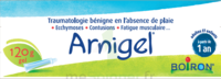 Boiron Arnigel Gel T/120g à Saint-Chef