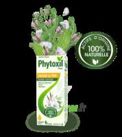 Phytoxil Toux Sans Sucre Sirop Adulte Enfant +2 Ans Fl/120ml