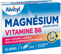 Govital Magnésium Vitamine B6 Comprimés B/45 à Saint-Chef