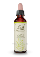Fleurs de Bach® Original Olive - 20 ml à Saint-Chef