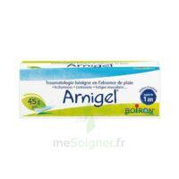 Boiron Arnigel Gel T(alumino-plastique)/45g à Saint-Chef