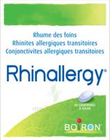 Boiron Rhinallergy Comprimés B/40 à Saint-Chef