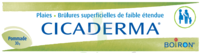 Boiron Cicaderma Pommade à Saint-Chef