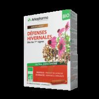 Arkofluide Bio Ultraextract Solution Buvable Défenses Hivernales 20 Ampoules/10ml à Saint-Chef