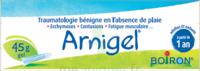 Boiron Arnigel Gel T/45g à Saint-Chef